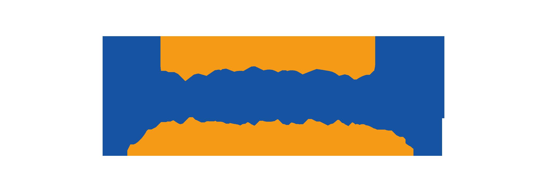 Next Vision Display